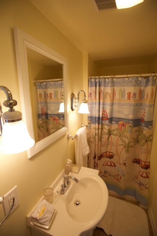 Lower suite shower.