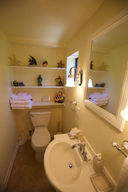 Tastefully designed bath on lower suite.