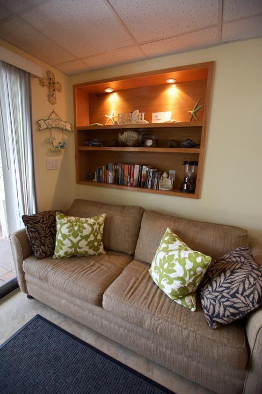 Our cozy lower studio pull-out sofa perfect for relaxing with a book!