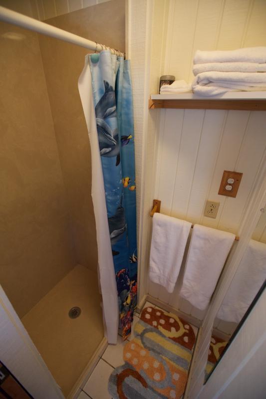 Upper Suite Shower!
