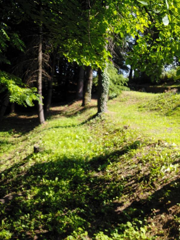Walk in the private park....Passeggiata nel parco privato...