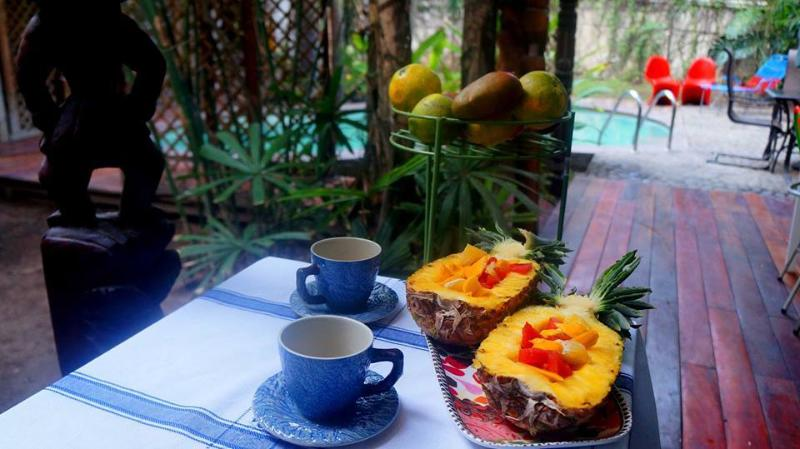 Fruit breakfast with coffee is included in your stay, while fruit from our orchard is free in-season