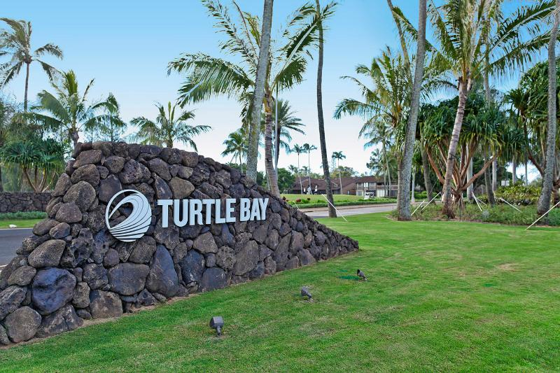 Welcome to Turtle Bay