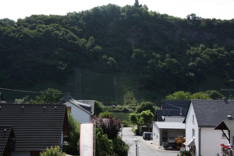 Aussicht vom Balkon auf die Mosel und das 'Wolfer Kloster'