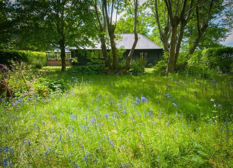 The cottage with private garden and bluebells