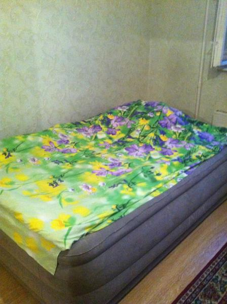 2-bedroom apartment near center of Moscow for fam, vacation rental in Barvikha