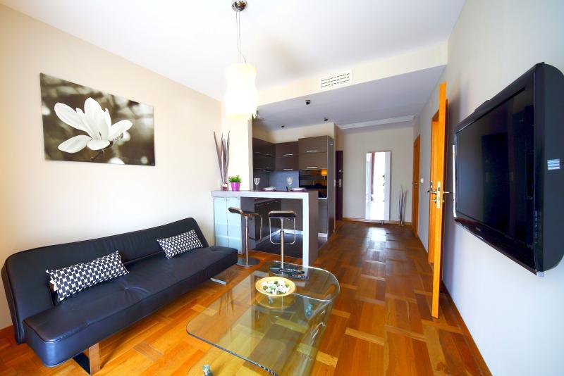 Living Room, Sofa, Coffee Table and TV