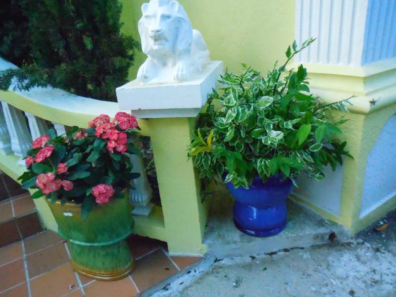 Relax en la entrada de León