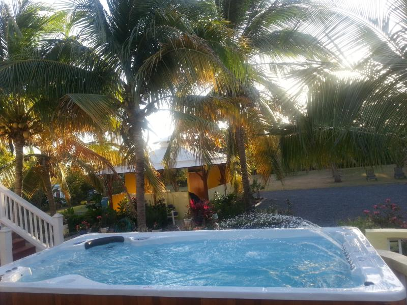 Vista de piscina del dormitorio de manzana