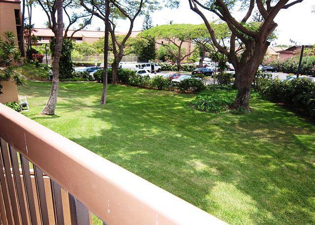 Uitzicht vanaf Maui Vista 2-222