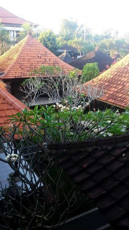 roof view from  balcony