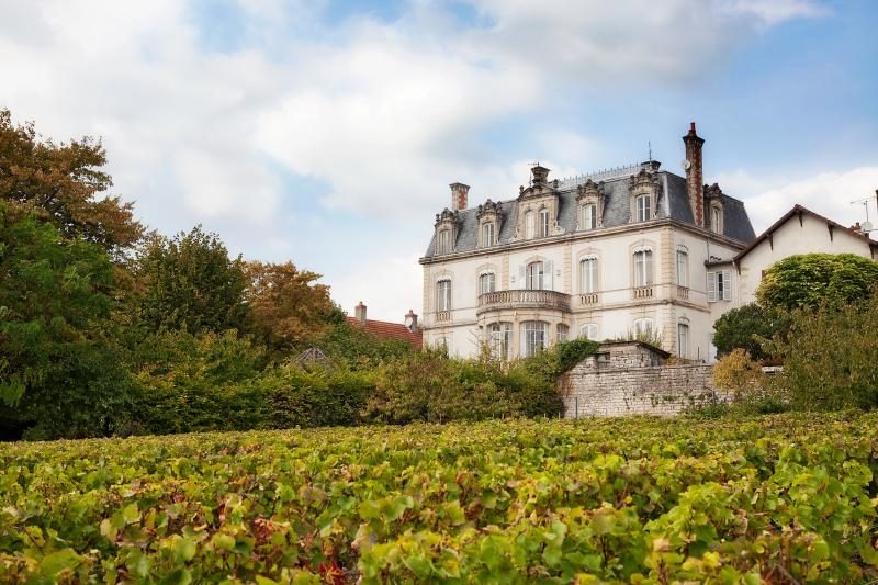 Château facade with nice view on vineyards