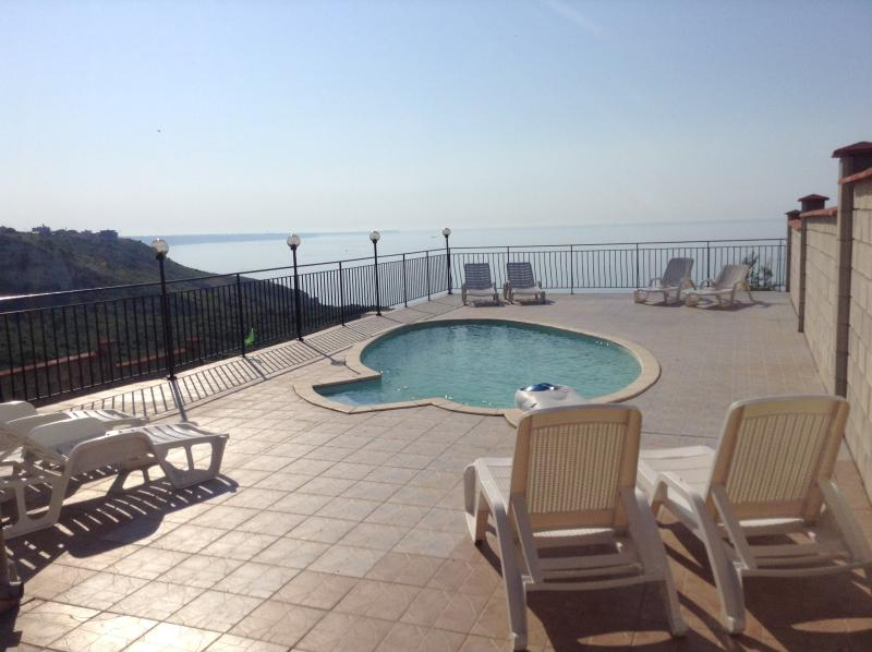 Pool and spacious patio area