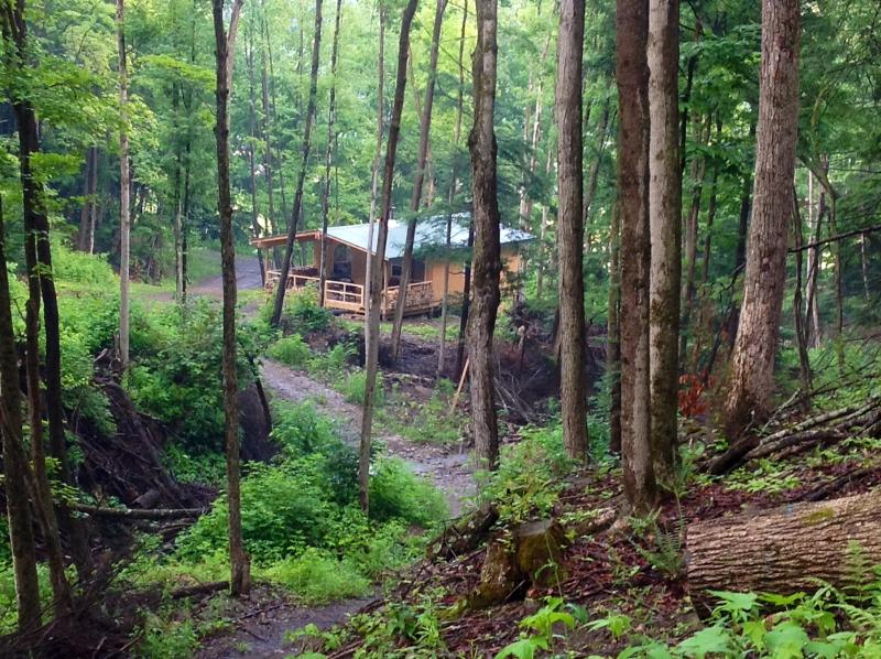 Cabin Creek Getaway (Letchworth Park) Waterfalls on  100 Private Acres of Forest, holiday rental in Swain
