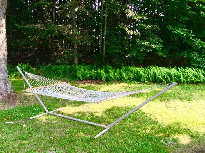 Hammock in yard for lounging