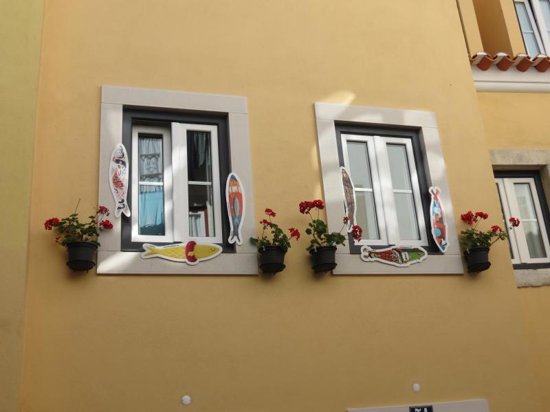 janelas do apartamento