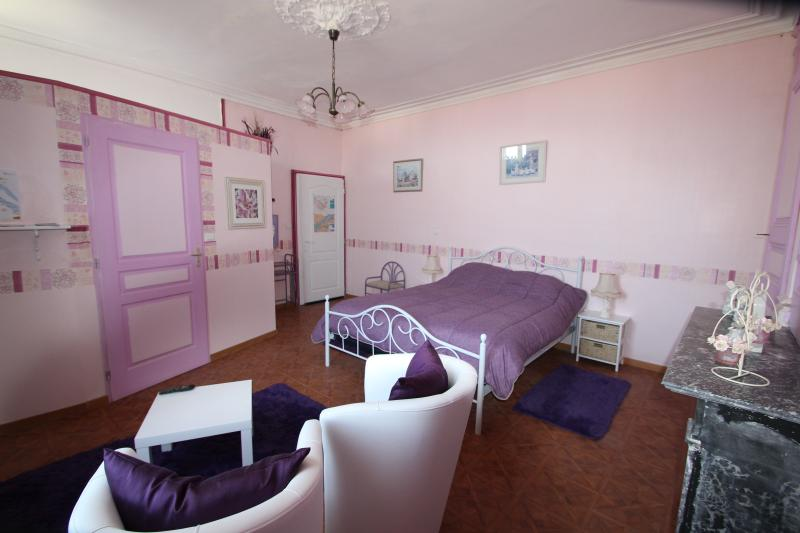 domaine des roses chambre violette, vacation rental in Berrie