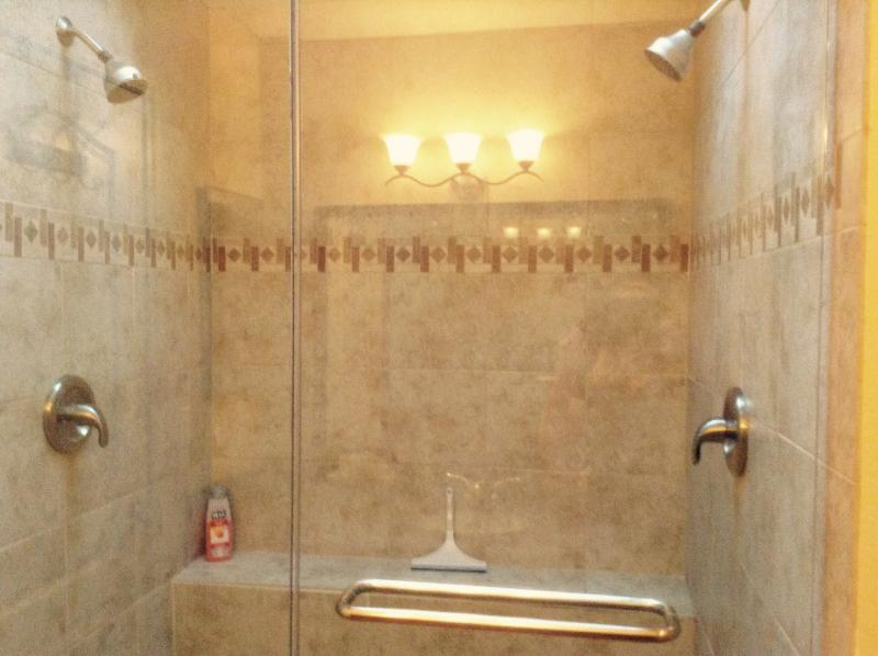 Double headed master shower