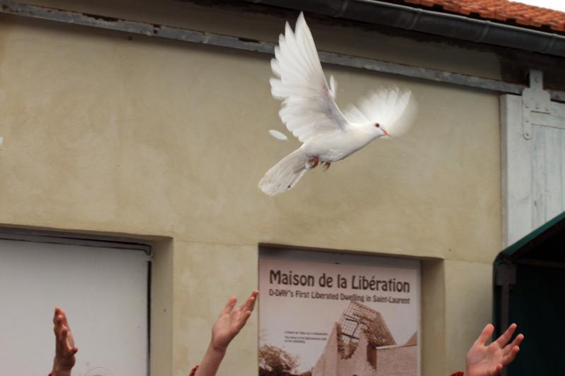 lâcher de colombes pour la mémoire et pour nos libérateurs , et pour la paix entre nos nations