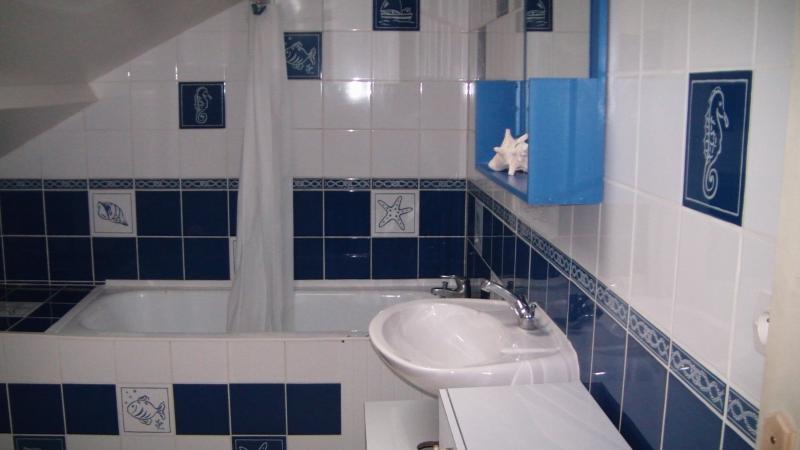 la salle de bain sur le thème de la mer , avec une baignoire et une douche incorporée au dessus .