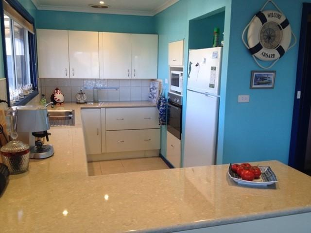 kitchen, large fridge, dishwasher, electric wok, electric grill, oven, microwave, condiments
