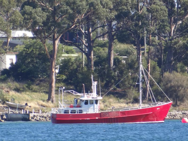 Local cray fishing boat which you see from the cottage.