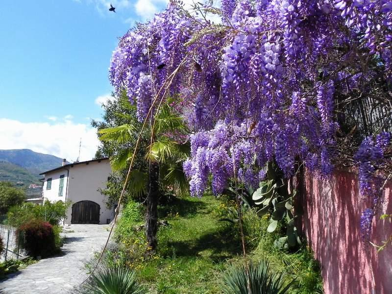 BEAUTIFUL APART.10 MIN FROM THE BEACH COUNTRY SIDE, vacation rental in Andora