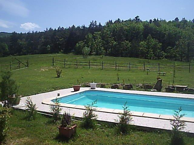 View of Quatre bougies' woodland, from the pool