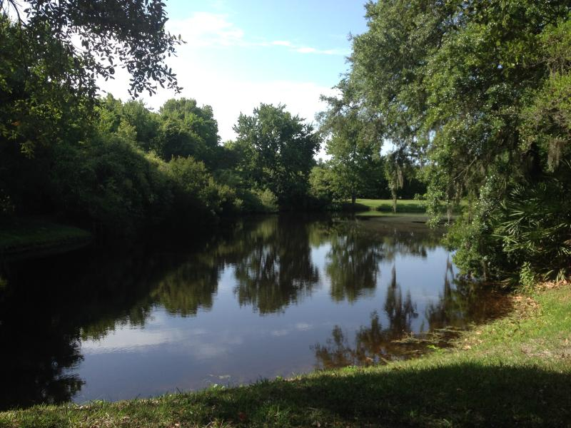 Captura y estanque de pesca de lanzamiento