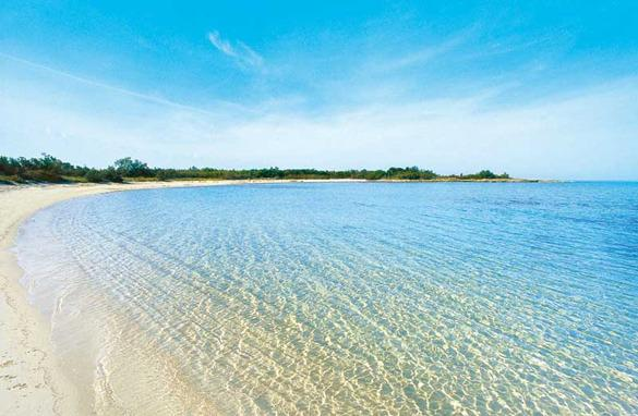 Torre Guaceto Natural Reserve's beautiful beach, it's about at 13 km from the town.