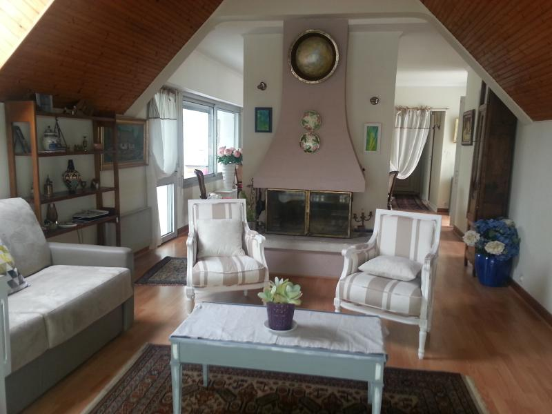 salon avec cheminée - canapé-lit, télé, wifi