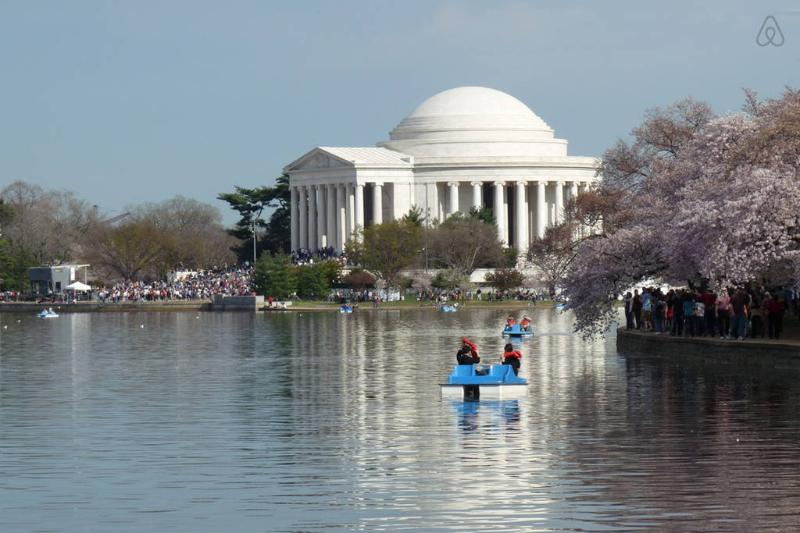 The Jefferson Memorial -10 Minutes Away