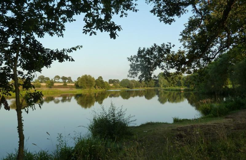 L'Etang de Guébriand - 1km - Picnic & fishing spots - breem, roach, black bass, perch & pike