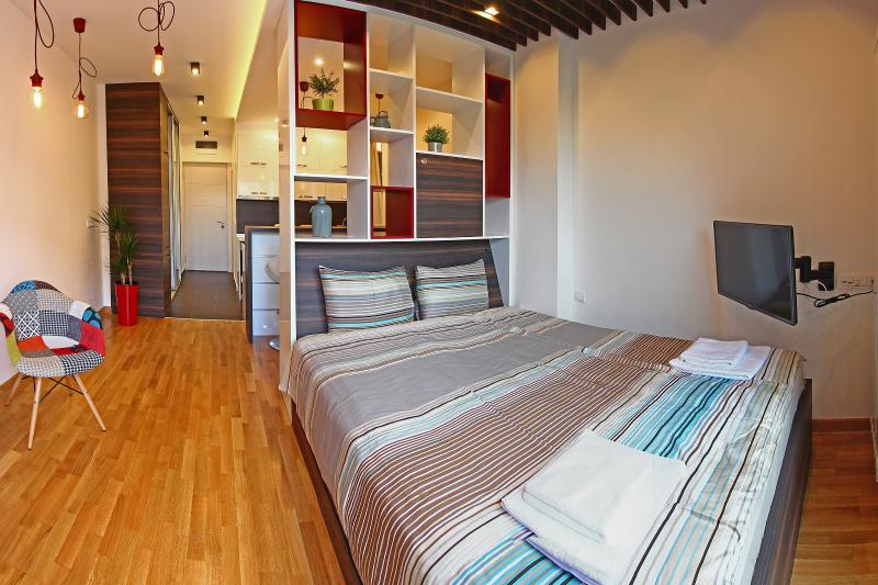 Beautiful studio in the city center, holiday rental in Dorcol