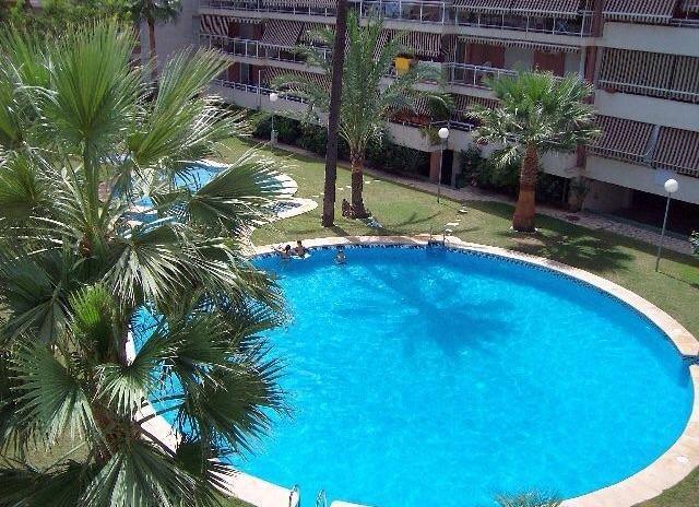 Garden and swimmingpool in the urbanisation