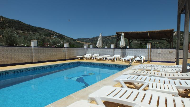 Poolside Apartment 1 With A chlorine free Pool and Hot Tub – semesterbostad i Iznajar