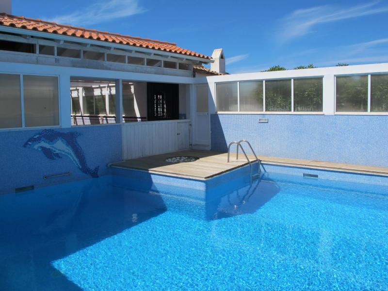 pool with sun bath area