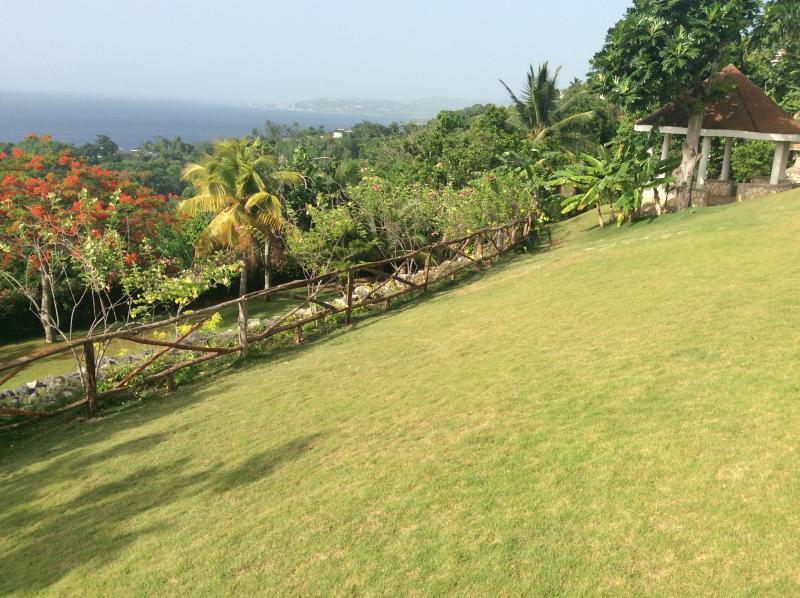 Eastern garden view