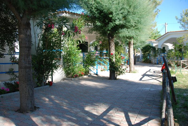 Palm Beach Peschici, holiday rental in Peschici