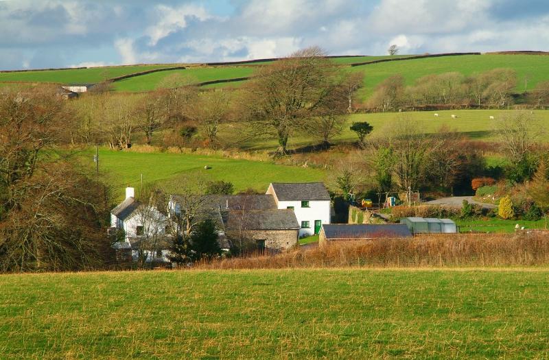 Northcote Manor Farm