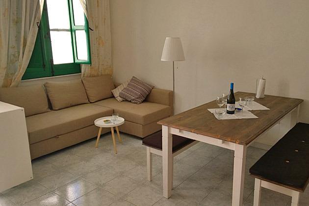 Salon et cuisine et canapé-lit