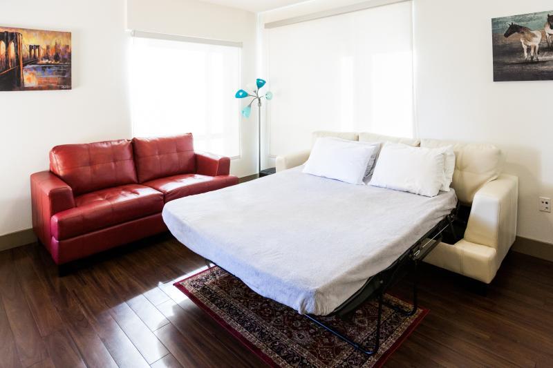 Spacious Sofa bed