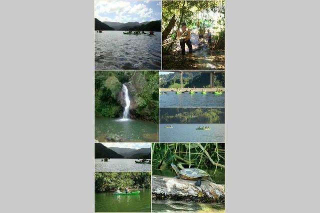 Turísticos locales: Una aventura kayak en uno de los lagos más grandes de Puerto Ricos a lo largo de la región norte.