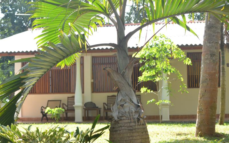Amara Eco Village, holiday rental in Illukkumbura