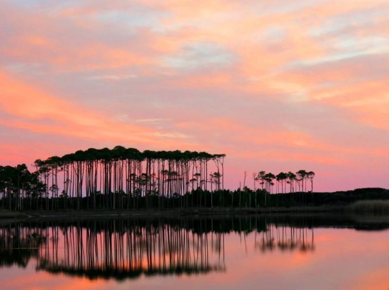 Sonnenuntergang über Grayton Beach State Park