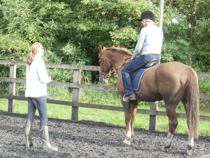 Riding Lessons available all year round from beginner to intermediate