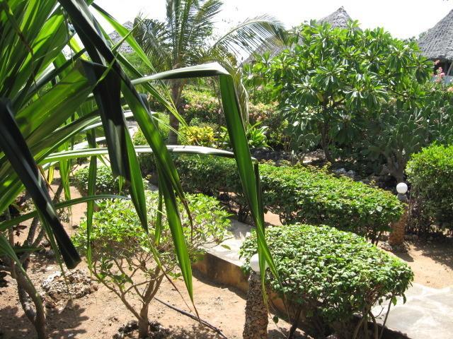 side villa private garden.