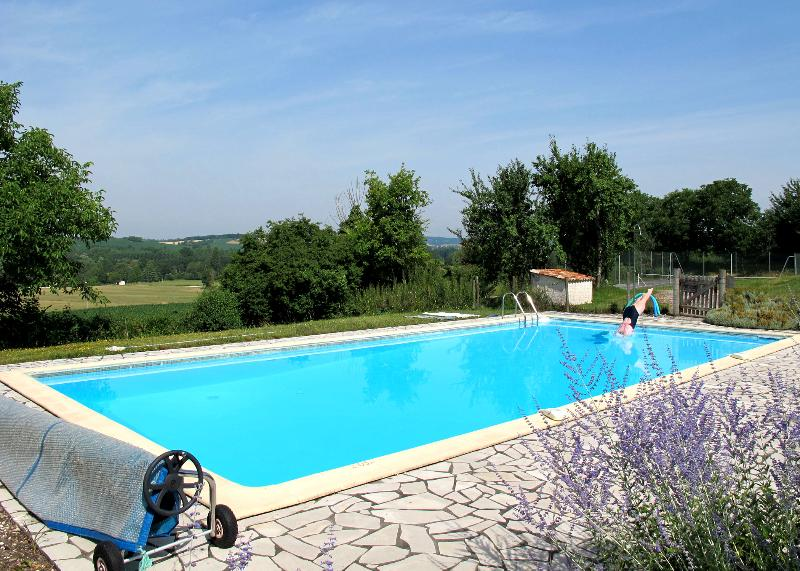 Amazing villa with shared pool, holiday rental in Allemans
