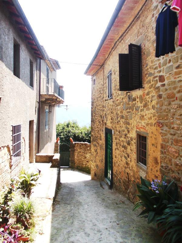 1800 's stone house
