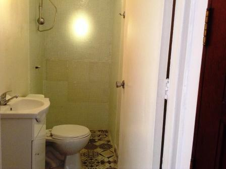 Visit bathroom, with a shower.